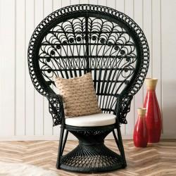 Faiza Peacock Chair, black room setting
