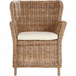 Lovina Wing Back Rattan Armchair front View