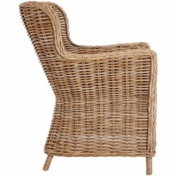 Lovina Wing Back Rattan Armchair Side View