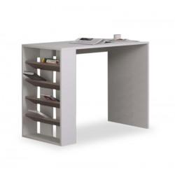 Seccion Study Desk