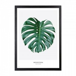 Framed palm leaf print in green with a black wooden frame