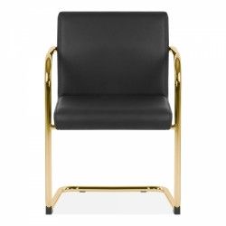 Tatamy Faux Leather Upholstered Dining Chair Black - Brass Front View