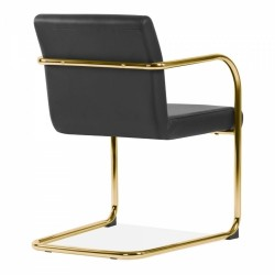 Tatamy Faux Leather Upholstered Dining Chair Black - Brass Angled Rear View