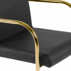 Tatamy Faux Leather Upholstered Dining Chair Black - Brass Seat Detail
