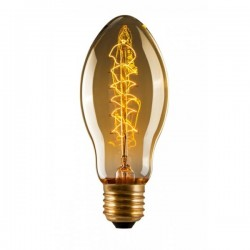 Edison  Tulip Spiral BT53 Filament Light Bulb