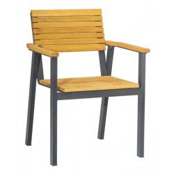 Metal and robina wood patio armchair