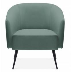 Ocala Velvet Armchair, sage green, front view