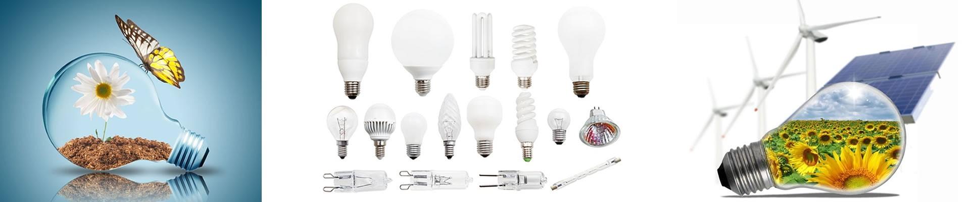 Light Bulbs | Vintage, LED & Energy Efficient Light Bulbs